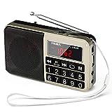 PRUNUS L-238SW Tragbares Radio klein...