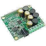 RPI HiFi AMP HAT TAS5713 Amplifier Audio Module...