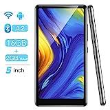 WiFi MP4 Player mit 5'' Touchscreen, AGPTEK 16GB...